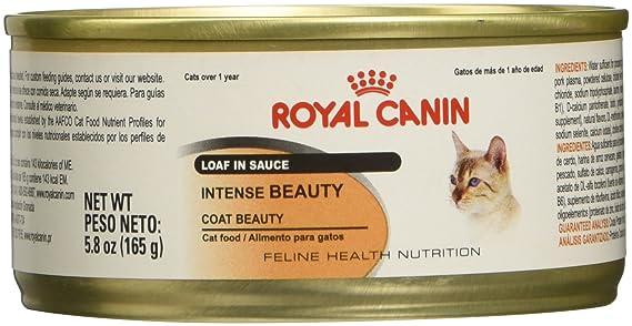 Amazon.com : Royal Canin Feline Health Nutrition Intense Beauty Loaf In Sauce Wet Cat Food, 3 oz., Case of 24 : Pet Supplies