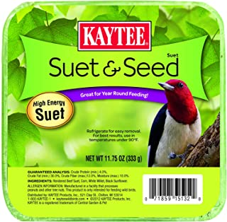 product image for Kaytee Suet & Seed Cake, 11.75 Oz (Pack of 1)