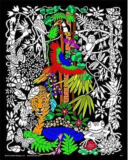 Amazon.com: Cosmos - 16x20 Fuzzy Velvet Coloring Poster: Home & Kitchen