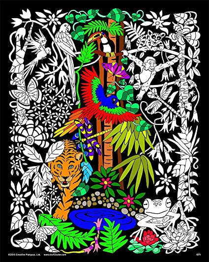Amazon.com: Rainforest - 16x20 Fuzzy Velvet Detailed Coloring Poster ...