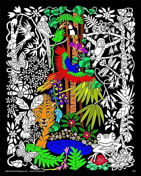 Amazon.com: Rainforest - 16x20 Fuzzy Velvet Detailed Coloring ...