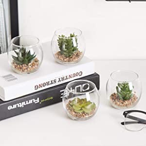 MyGift Set of 4 Decorative Mini Desktop Artificial Succulent Plants in Round Glass Display Vases (Assortment 2)