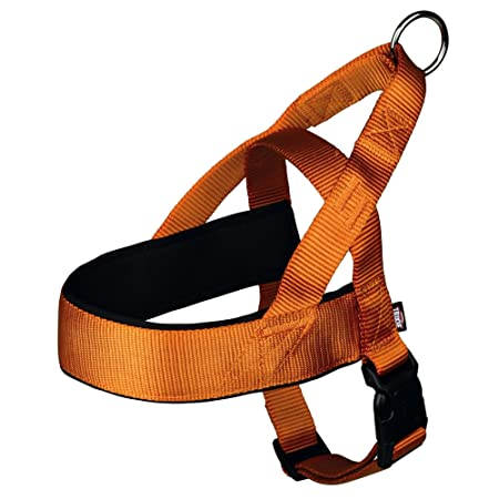 Trixie Premium h-Harness: Amazon.es: Productos para mascotas