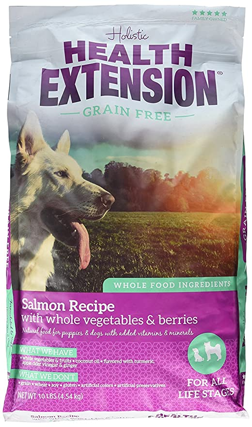 Amazon health extension grain free salmon dry dog food recipe health extension grain free salmon dry dog food recipe 10lb forumfinder Image collections
