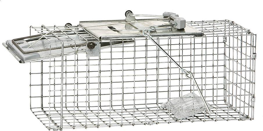 Havahart Professionelle Lebendtierfalle Fur Ratten 1 Turige Easy Set Kafigfalle Mod 1083 Amazon De Garten