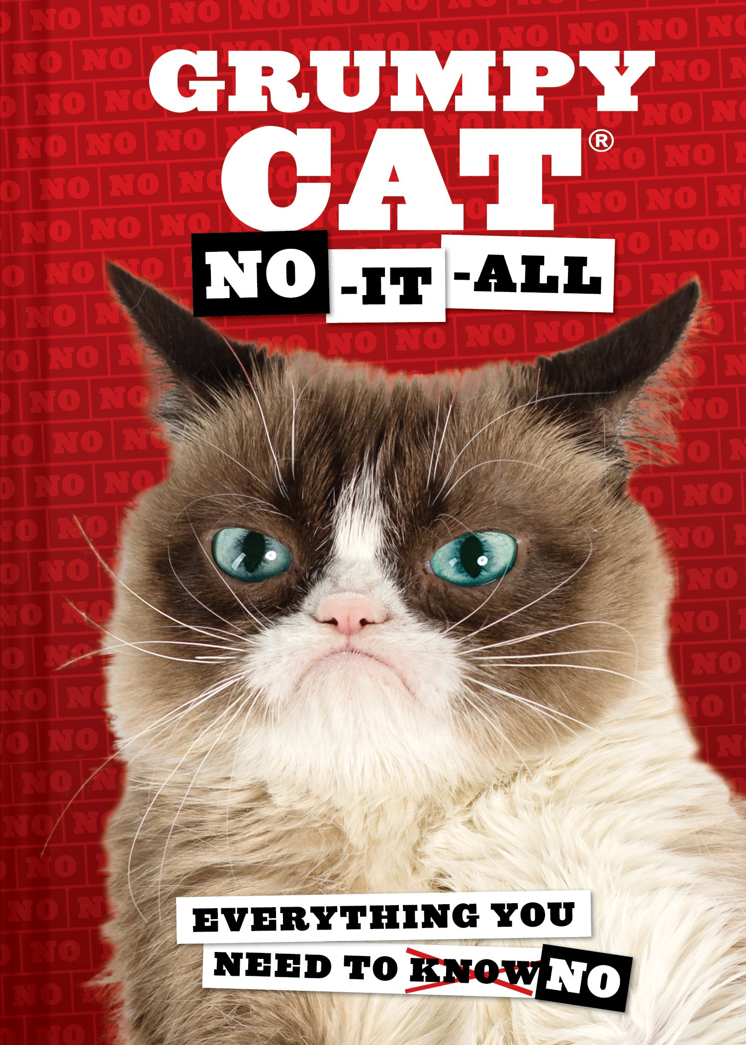 Grumpy Cat No It All Everything You Need To 9781452149684 Amazon Books