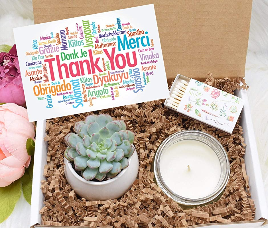 Succulent Gift Box Succulent Box Gift for Him Soy Candle or Oil Gift Box Compass Bracelet Best Friend Gift Friend Succulent Gift Box
