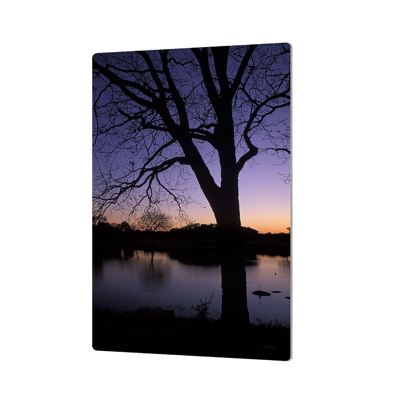 16 by 24 ArtWall Kathy Yates Texas Sunset on The Lake Artmetalz Aluminum Print