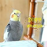 2019年大判カレンダー オカメインコ