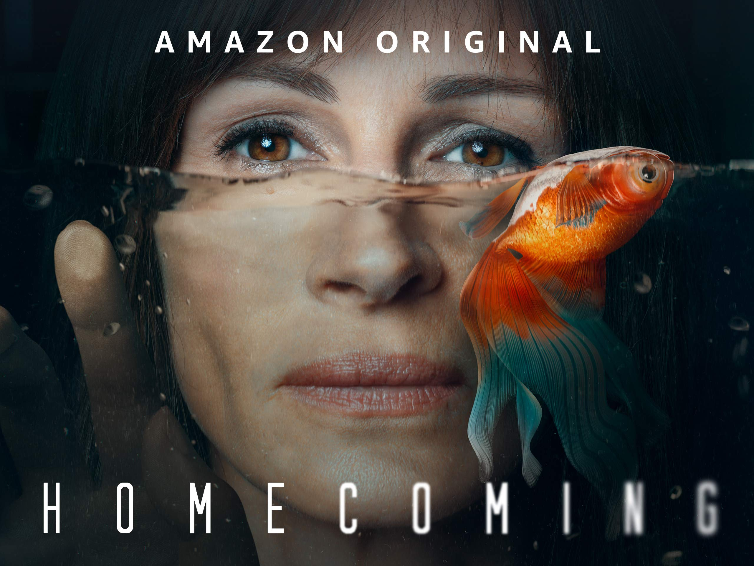 Amazon Com Watch Homecoming Season 1 4k Uhd Prime Video
