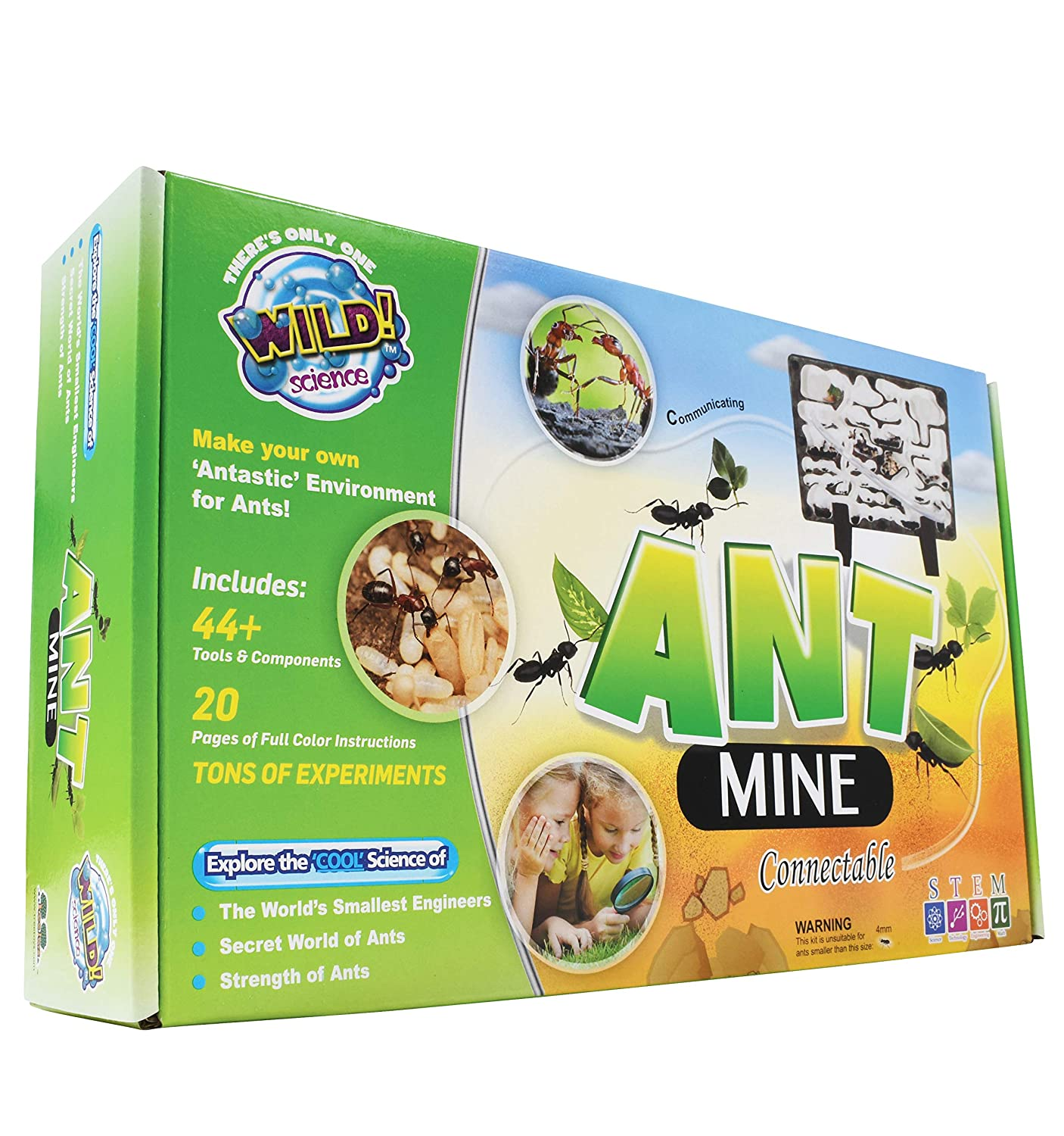 WILD! Science Ant Mine - Make Your Own Ant Farm for Ages 6+ - Includes Casting Plaster, Multi-Chamber Ant Colony Mold, Viewing Window, Full-Color Instruction Booklet and More!