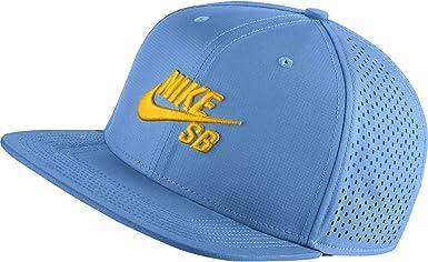 guapo invernadero principalmente  Amazon.com: Nike Hombres SB Pro El Snapback Sombrero, Azul, talla única:  Clothing