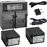 Kastar LCD Dual Smart Fast Charger & 2 x Battery for Sony NP-FV100, NP-FH100, NPFV100, NPFH100, FV100, FH100 and HDR-CX110, C