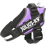 Julius-K9, 16IDC-PR-2, IDC-Powerharness, Size: 2, Purple