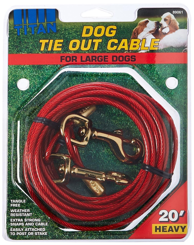 Titan Pesados Cable Perro Corbata out 20 pies: Amazon.es ...