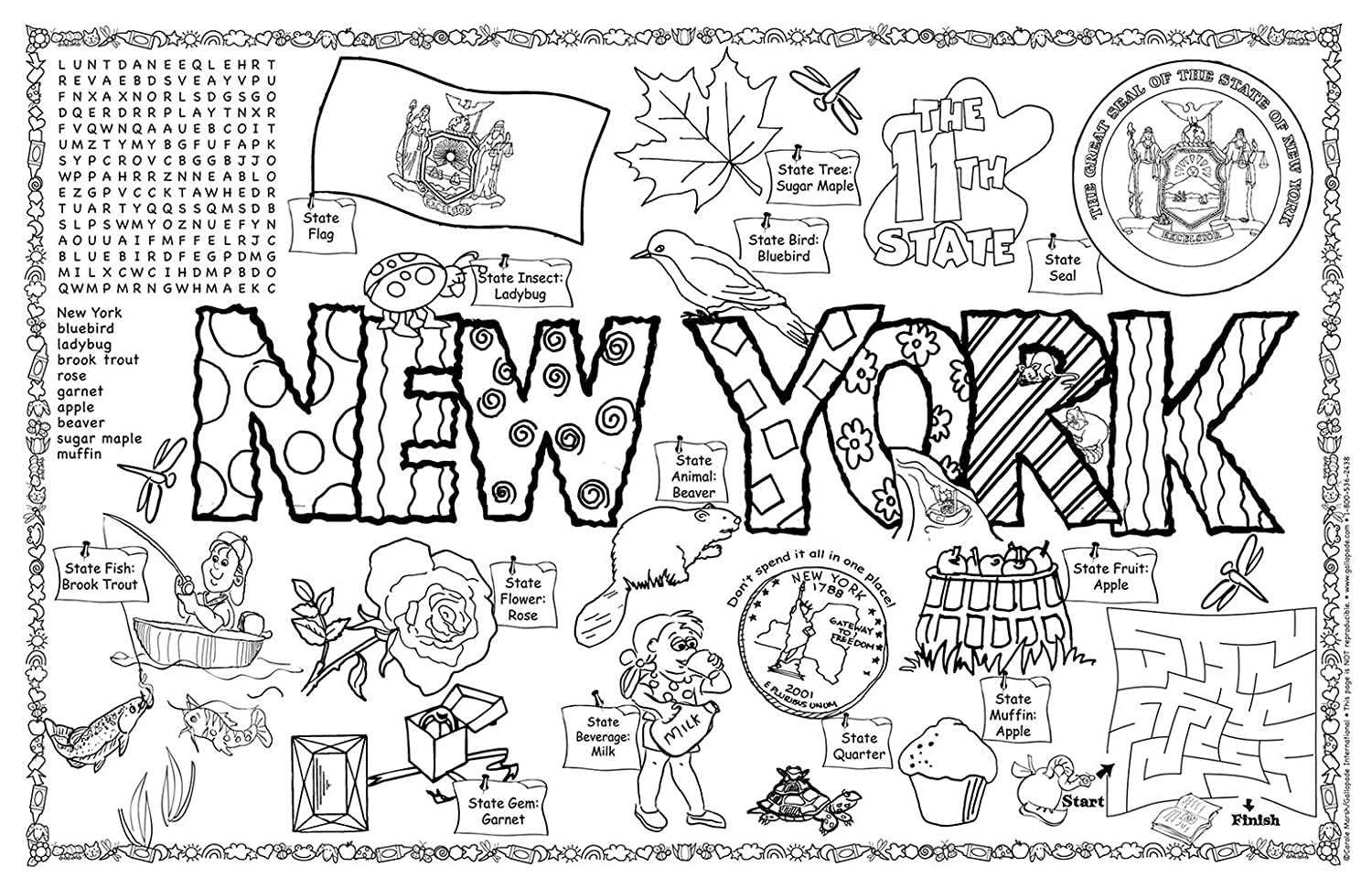Amazon gallopade publishing group new york symbols and facts amazon gallopade publishing group new york symbols and facts fun sheet pack of 30 9780635062772 office products buycottarizona Image collections