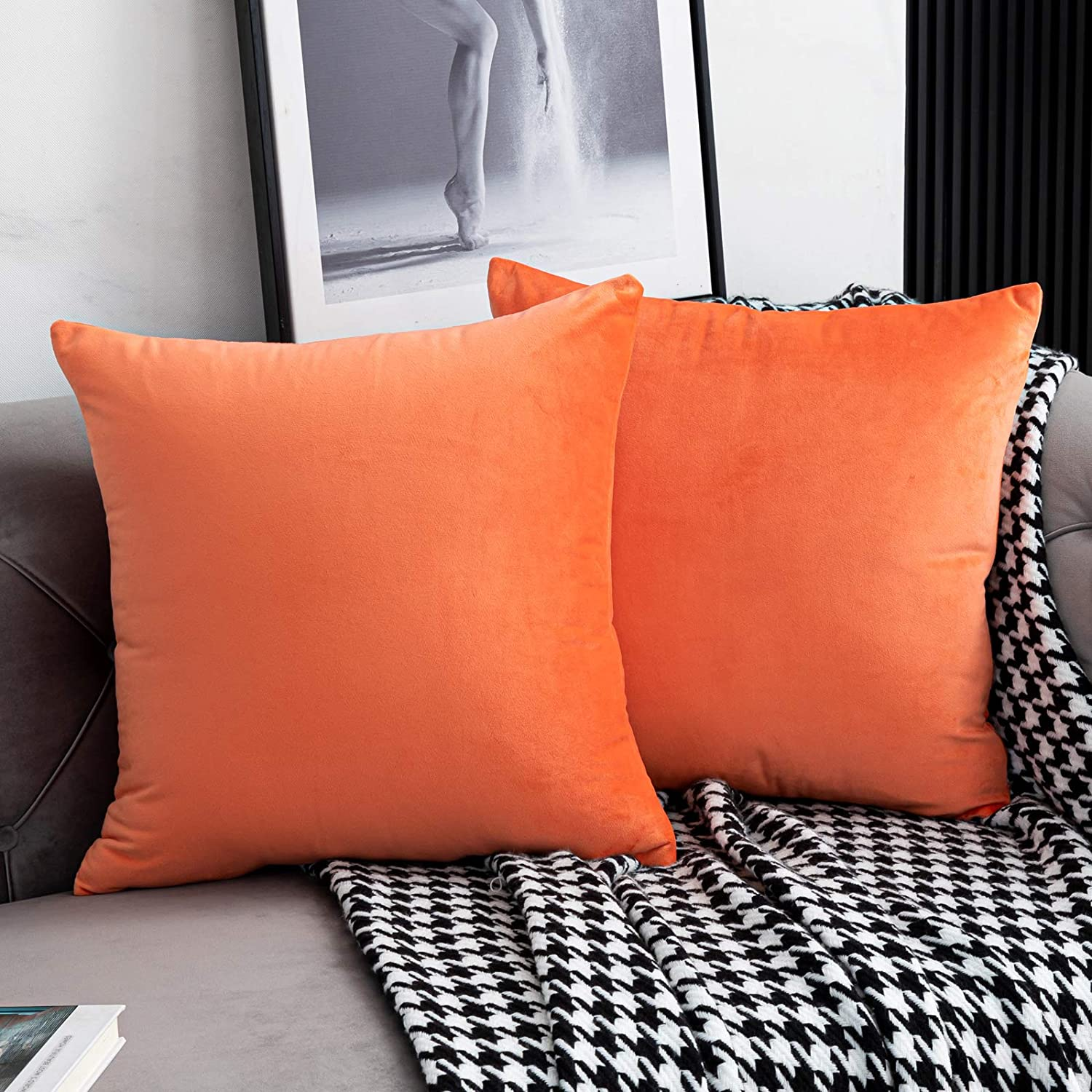 WLNUI Set of 2 Soft Velvet Coral Pillow Covers 18x18 Inch Square Decorative Throw Pillow Covers Cushion Case for Sofa Couch Home Farmhouse Decor