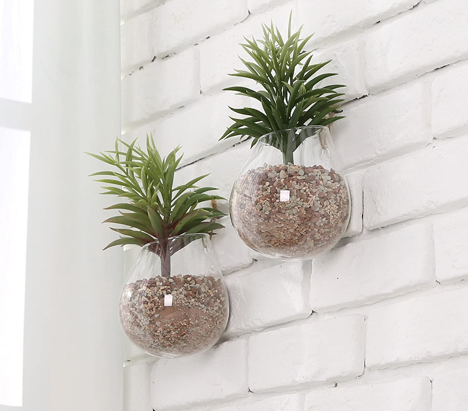 Amazon clear glass wall mounted plant terrariums hanging amazon clear glass wall mounted plant terrariums hanging display planter vases pots decor set of 2 garden outdoor reviewsmspy