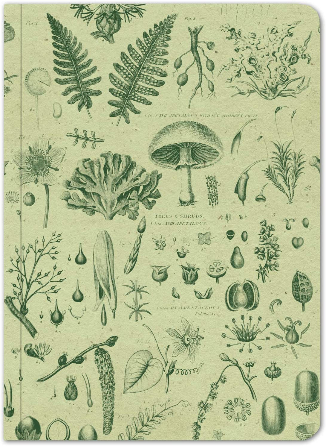 Cognitive Surplus Plants /& Fungi Softcover Notebook. Dot Grid, 100/% Recycled