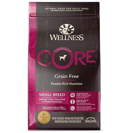 Buy wellness core grain free small breed turkey chicken natural wellness core grain free small breed turkey chicken natural dry dog food 4 forumfinder Gallery