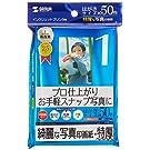 SANWA SUPPLY JP-EP6HK インクジェット写真印画紙・特厚