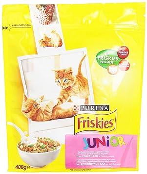 Purina Alimento Completo para Gatos y gatte (gestazione/Lactancia, con Pollo, Leche y Verduras aggiunte - 400 g: Amazon.es: Productos para mascotas
