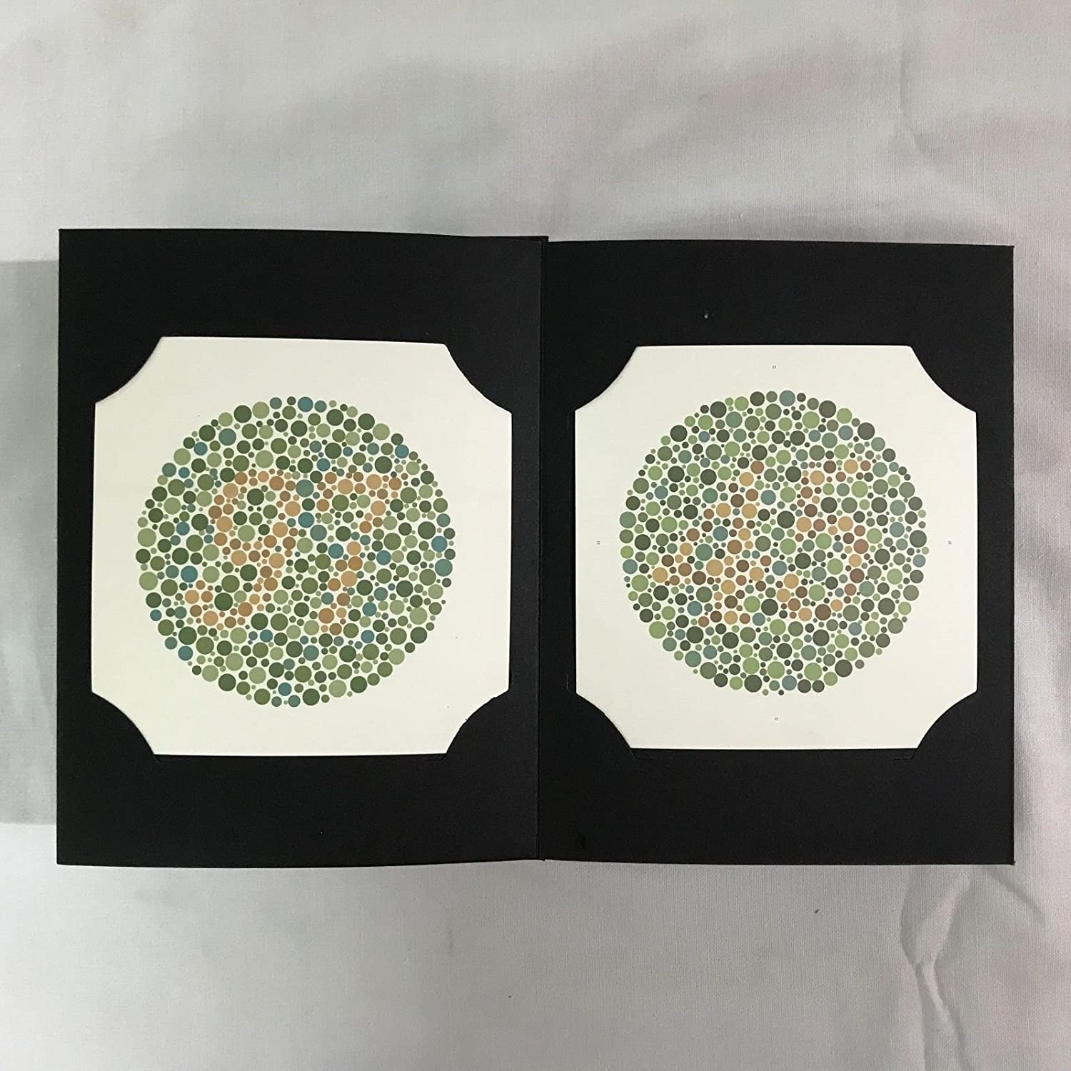 Amazon.com: Ishihara\'s Book for Colour Deficiency Latest Edition 38 ...