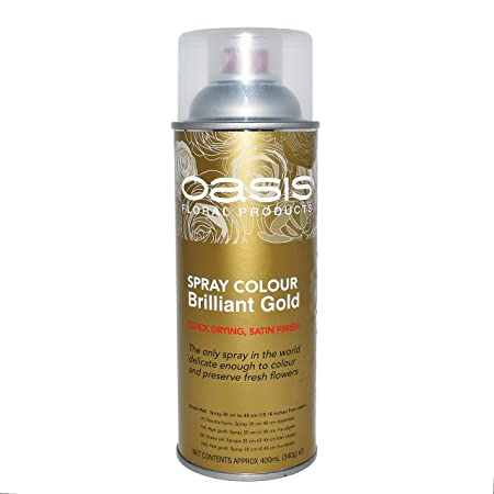 1 x 400ml Can of Oasis Brilliant Gold Spray Colour Paint