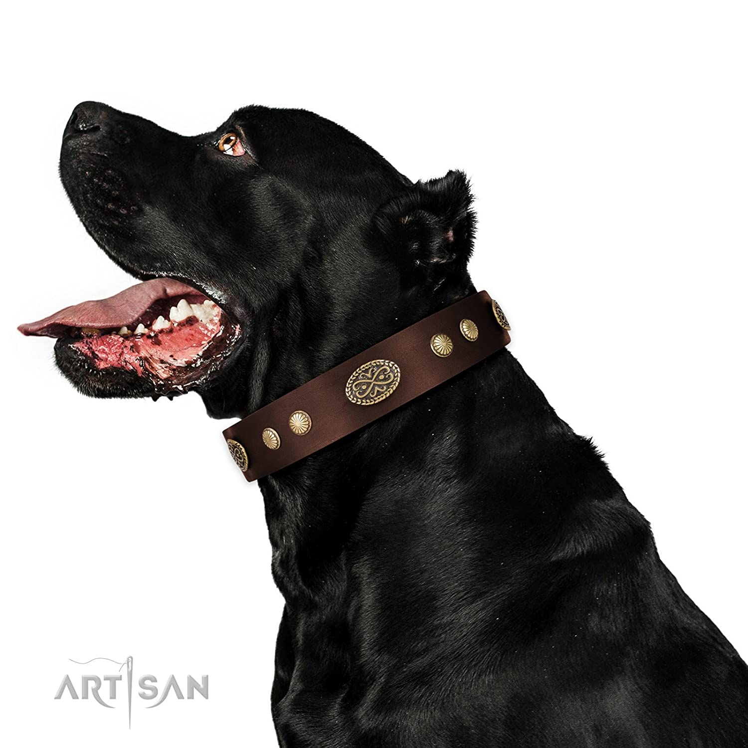 Fits for 25 inch (63cm) dog's neck size FDT Artisan 25 inch Brown Leather Dog Collar Retro Flora 1 1 2 inch (40 mm) Wide Gift Box Included