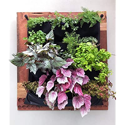 12 Pocket Indoor Waterproof Vertical Living Wall Planter: Garden & Outdoor