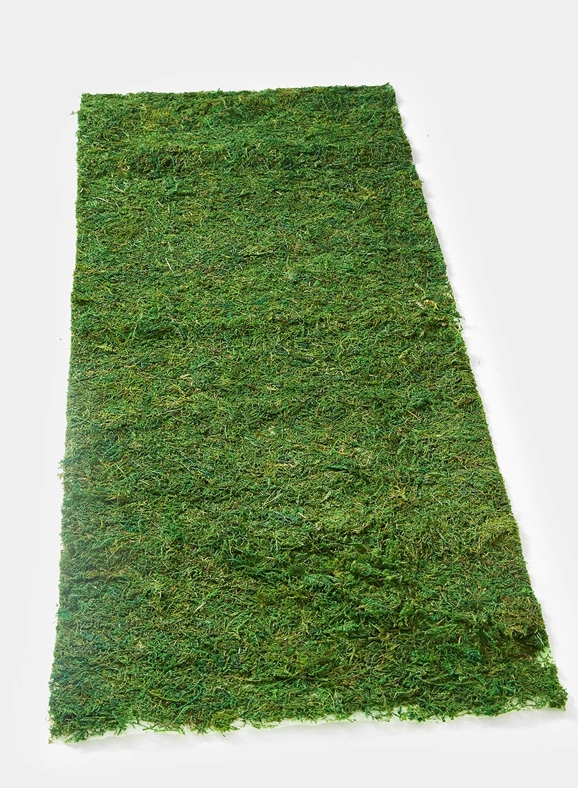 DALAMODA 14''W x 60''L Natural Green Preserved Sheet Moss Mat Purpose Moss Mat Runners, Instant Green, Dried Moss Table Runner for Party Garden Decoration, Floral Moss (14''W x 60''L)