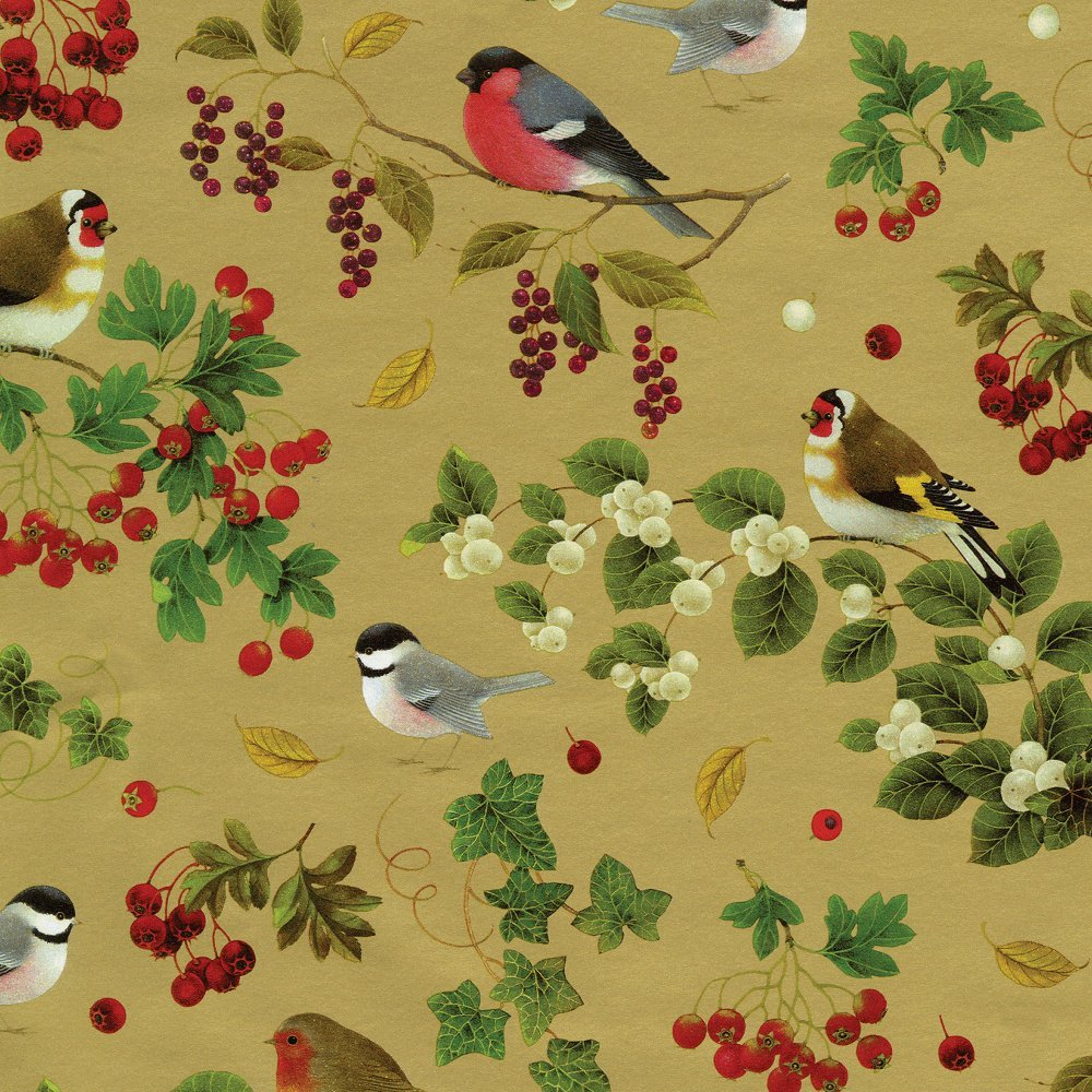 Caspari Entertaining with Continuous Gift Wrapping Paper, Winter Birds Gold, 8-Feet, 1-Roll 95530RC