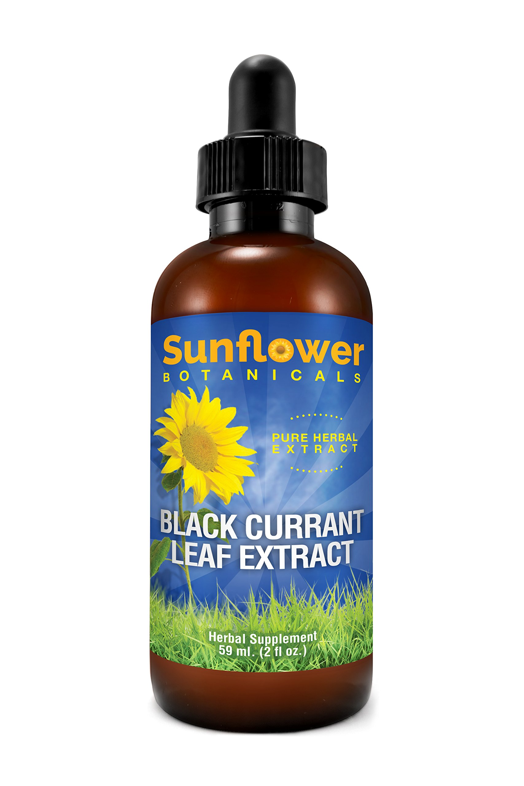 Black Currant Leaf Extract, All Natural, 2 Ounces, Dropper-Top Glass Bottle