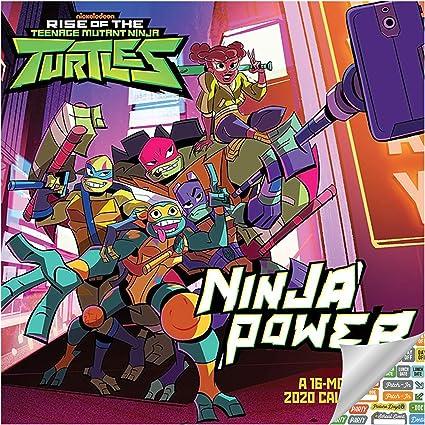 Teenage Mutant Ninja Turtles Calendar 2020 Set - Deluxe 2020 TMNT Wall Calendar with Over 100 Calendar Stickers (TMNT Gifts, Office Supplies)