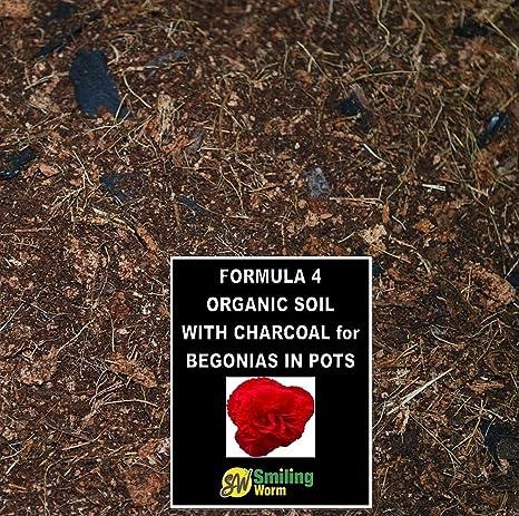 1,5 litro de tierra orgánica suelo para helecho Asplenium Platycerium, 4 ingrédients –