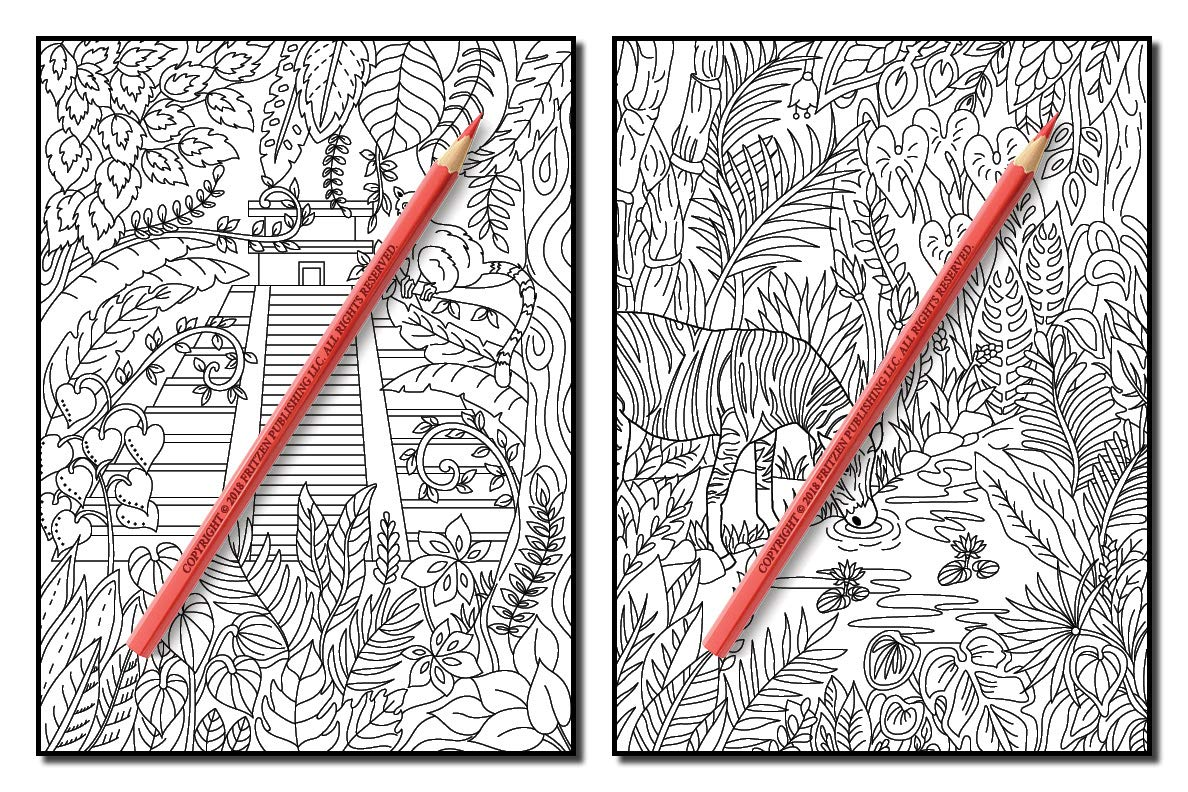 Amazon Secret Jungle An Adult Coloring Book With Exotic Tropical Animals Mysterious Nature Scenes And Flower Patterns For Relaxation