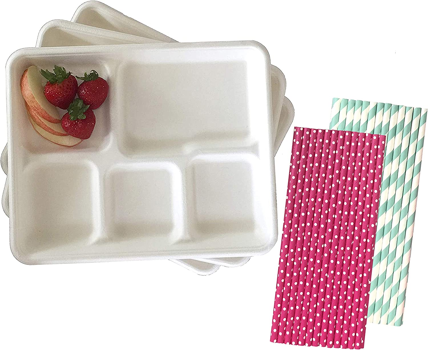 Compostable White Paper 5 Compartment School Lunch Trays - Retro Style White - 24 Pack and 50 Paper Drinking Straws
