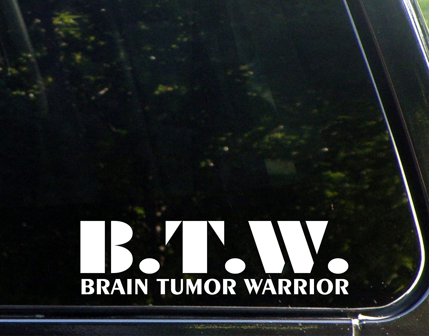 BTW Brain Tumor Warrior – 8 3 / 4