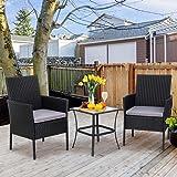 Shintenchi 3 Pieces Outdoor Patio Furniture Set, Portable Rattan Chair Wicker Furniture for Backyard Porch Lawn Garden Balcon