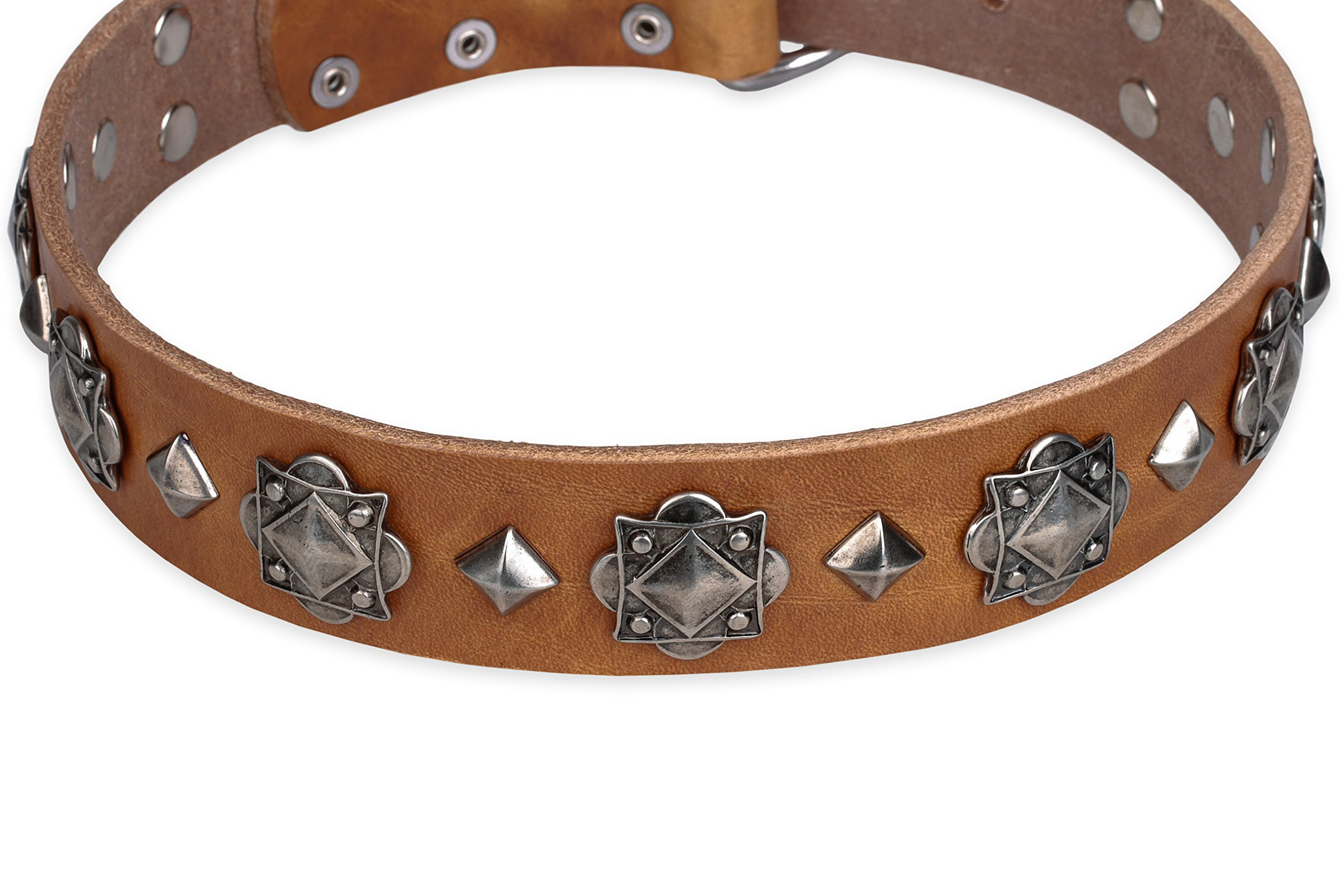 FDT Artisan 19 inch 'Code of Chivalry Embellished Tan Leather Dog Collar - 1 1/2 inch (40 mm)