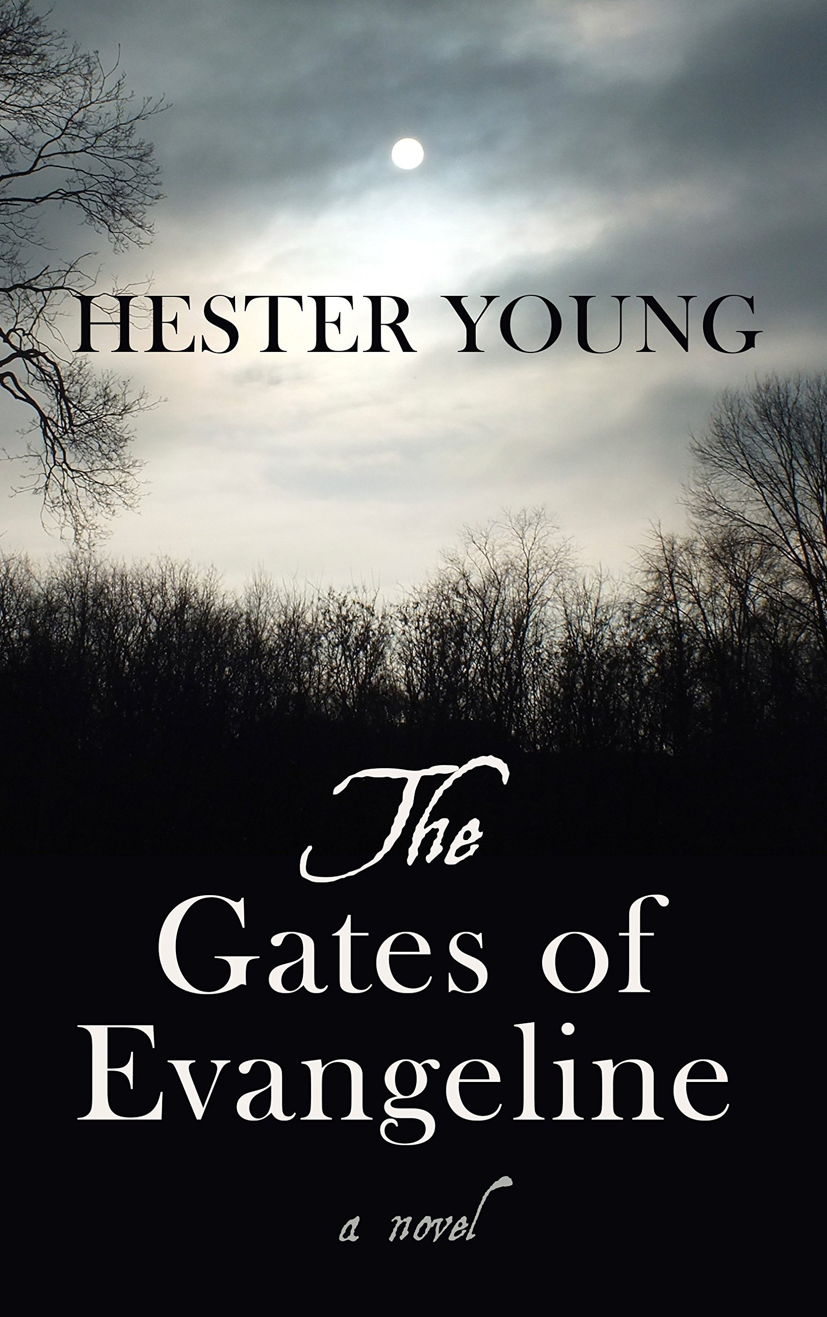 The Gates of Evangeline (Thorndike Press Large Print Reviewers' Choice) PDF