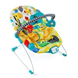 Amazon Price History for:Bright Starts Safari Smiles Bouncer
