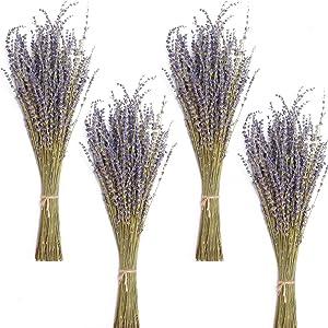 Timoo Dried Lavender Bundles 100% Natural DriedLavenderFlowers for Home Decoration, Photo Props, Home Fragrance, 4 Bundles Pack