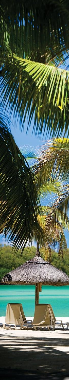 JP London UCPS9099 uStrip Peel and Stick Mural Oasis Coast Tropical Beach Cabana Paradise at 8.5 feet high by 1.5 feet wide