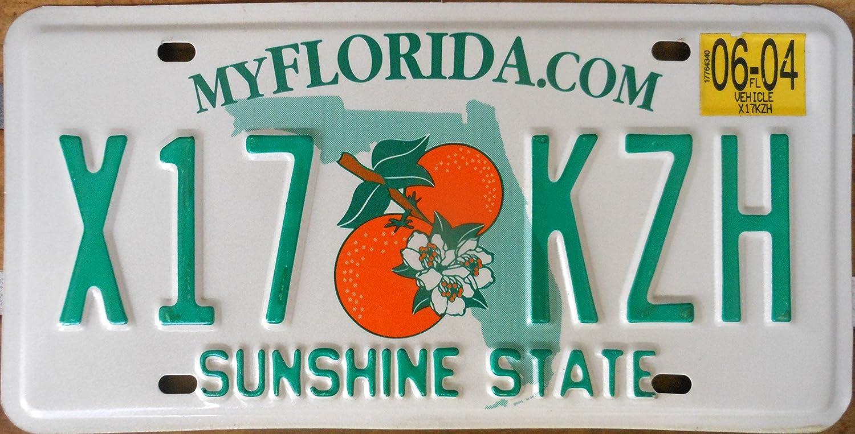 Florida license plate image