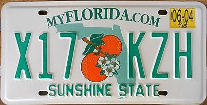 Amazon Com Florida Myflorida Com License Plate Green Numbers On