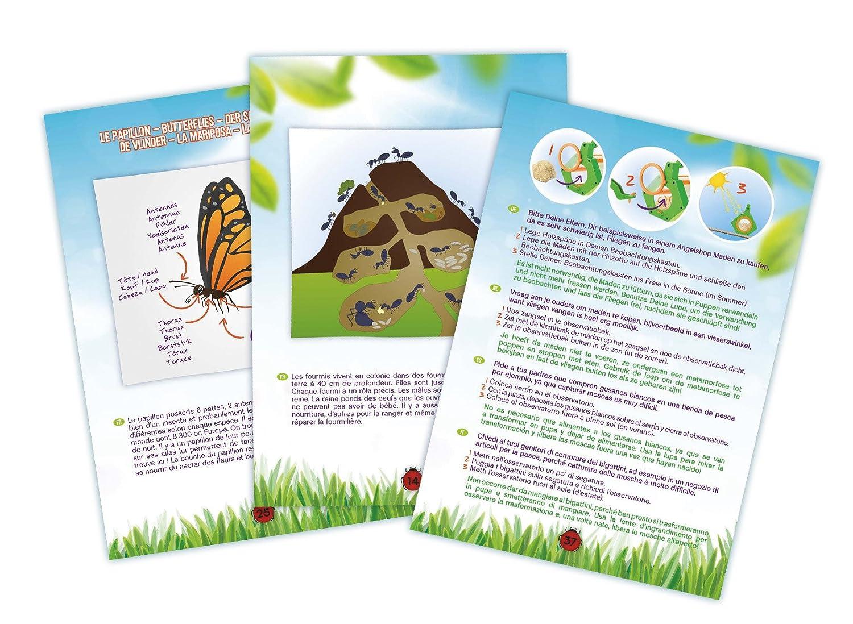Insektenk/äfig F/ür Kinder Kinder Insekten Kasten Insektenk/äfig Insektenbox Set Critter Case Insektenbox Kinder Insekten K/äfig Mit Lupe Und Pinzette Kinder Outdoor Garten Feld Lernspielzeug Orange Gr/ün