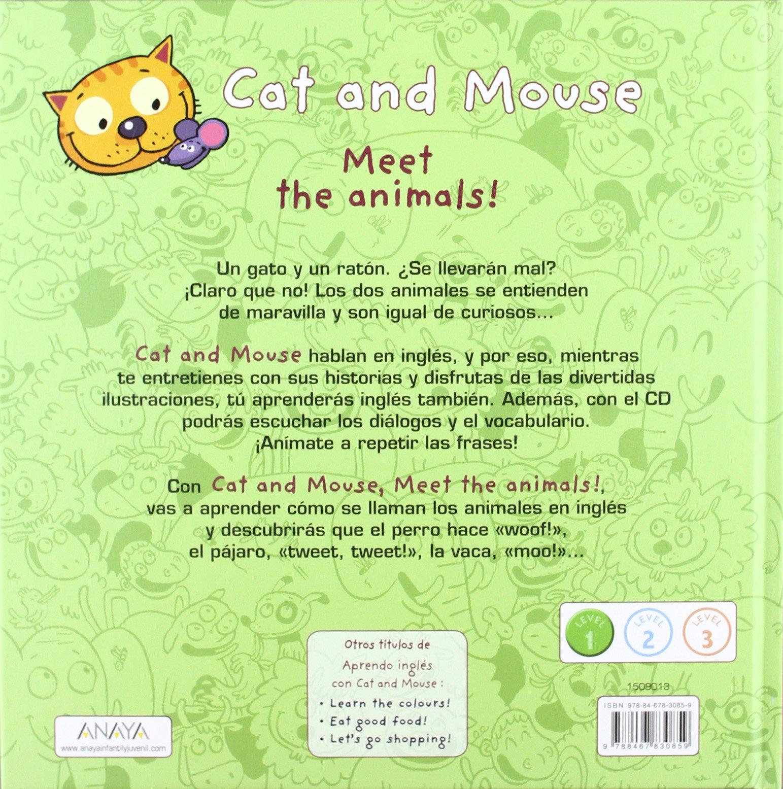 Cat and Mouse: Meet the animals!: Loïc Méhée Stéphane Husar : 9788467830859: Amazon.com: Books