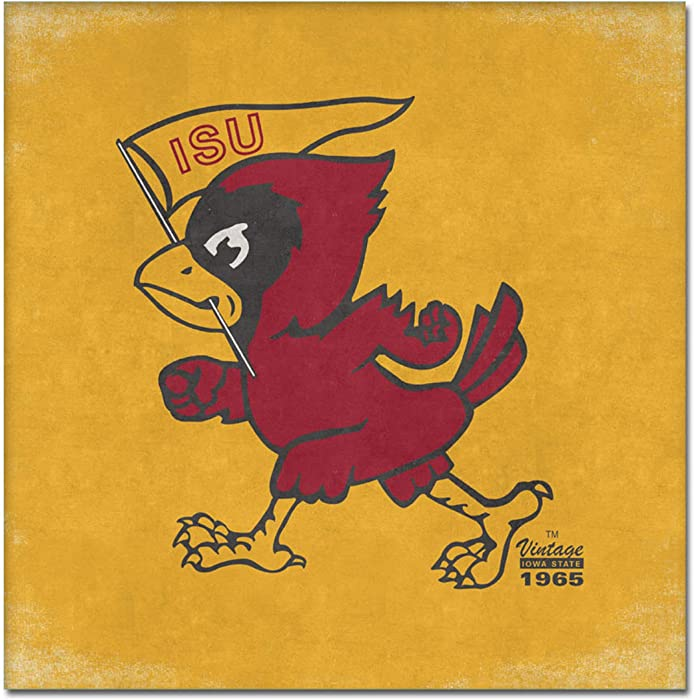 Top 10 Iowa State Cyclones Canvas Wall Decor