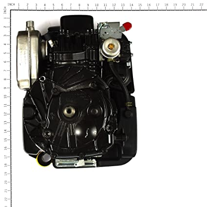 Amazon.com: Briggs and Stratton - Motor 850 de 190 cc de ...